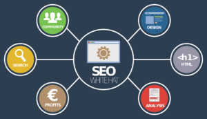 Contact Top SEO Pages team for result based SEO services and strategy for your business
